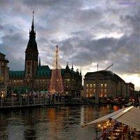 Rathaus Hamburg und Alster :: Nina Yudicheva