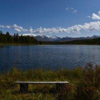 Лёгкий ветерок над озером. :: Валерий Медведев