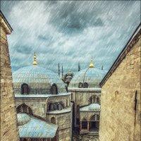 Стамбул в непогожий день :: Ирина Лепнёва