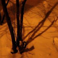 Ночные тени :: Андрей Лукьянов