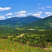 Дорога в горах :: Сергей Чиняев