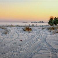 Про вечерние краски, туман, следы на снегу... :: Александр Никитинский
