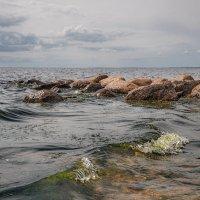 Вода и камни :: Владимир Макаров
