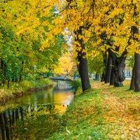 прощай осень :: юрий затонов