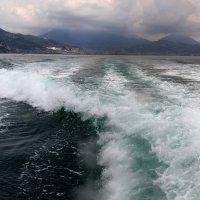 Суровое море :: Татьяна Старчикова
