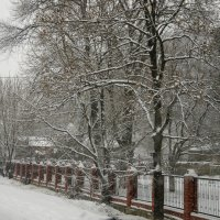 зима пришла :: Елена