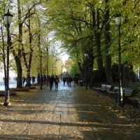 Осло,осень ,октябрь :: Natalia Harries