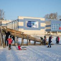 Зимние забавы :: Оксана Грищенко