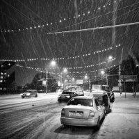 Вот такой снег... :: Ирина Токарева