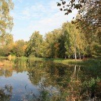 Ботанический сад :: Владимир Холодницкий