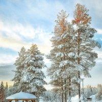 Лапландия :: Конст@нтин Scryn