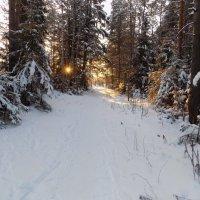 День клонился к закату....,декабрь. :: Алена