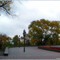 Одесские скверы... :: Любовь К.