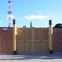 Ворота и фрагмент забора из бамбука :: Валерий Новиков