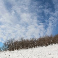 Небо ноября :: Светлана Попова