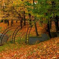 Граница парка :: Сергей Карачин