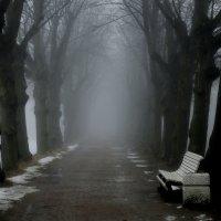 Последний снег... :: Юрий Цыплятников