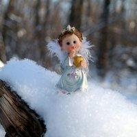 Какое ж чудо попросить на Рождество?.. :: Андрей Заломленков
