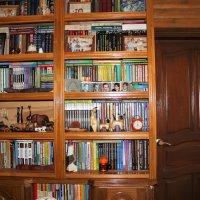 Книжный шкаф :: Венера Чуйкова
