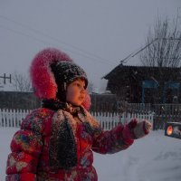 повелительница  снежинок :: Владимир Коваленко