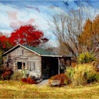Old log cabin. Texas. 2010 :: Танкист .