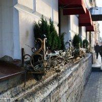 street photo :: юрий карпов