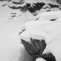 Чёрно-белая зима. :: Андрий Майковский