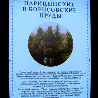 Описание. :: Владимир Драгунский