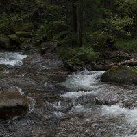 дорога к водопаду :: Кузнецов