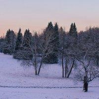 Зима в розовом свете.... :: Tatiana Markova