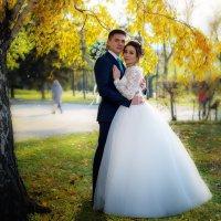 Золотая осень :: Анастасия Иванова
