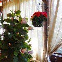 Интерьер в кафе :: татьяна