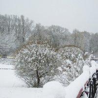мостик, перила в снегу :: Анна Воробьева