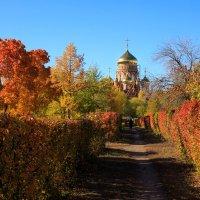 Золотая осень :: Ксения