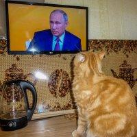 так смотрели Путина четыре часа :: Сергей Кордумов