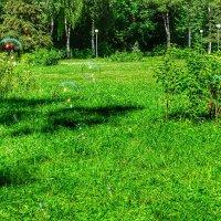 Интерьер городского парка :: Милешкин Владимир Алексеевич
