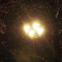 Водоворот света :: Софья Борисова