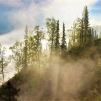 Туман поднимается в горы :: Сергей Чиняев