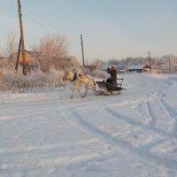 Зимняя картинка :: Ольга