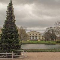 Юсуповский сад. Готовимся к Новому Году. :: bajguz igor