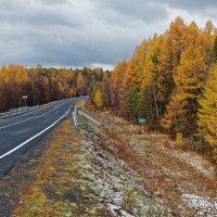 Осенняя дорога :: Евгений Карский