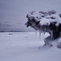 На берегу :: Елена Третьякова