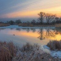 Весенним утром :: Сергей Раннев
