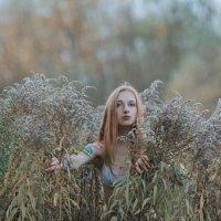 Field :: Сергей Гутерман