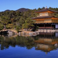 Кинкакудзи - золотой павильон в Киото :: Евгений Печенин