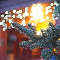 Новогоднего настроения вам коллеги :: Игорь Касьяненко