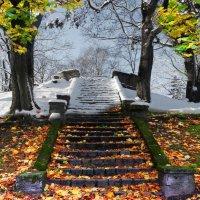 Осень-зима :: Александр Михайлов