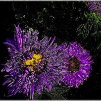 Фиолетовый сон :: Нина Корешкова