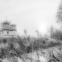 Морозный день. :: Владимир Безбородов