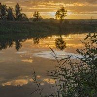Оранжевый закат :: Лариса Березуцкая